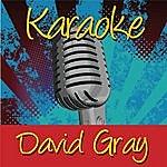 David Gray Karaoke: David Gray