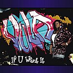 Vula If You Want It (4-Track Remix Maxi-Single)