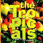 The Tropicals Aigua De Coco