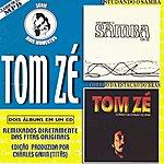 Tom Zé Dois Momentos, Vol.2