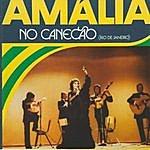 Amália Rodrigues Amália No Canecão (Rio De Janeiro)