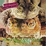 Peter & The Test Tube Babies The Mating Sounds Of South American Frogs