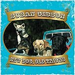 Susan Gibson New Dog, Old Tricks