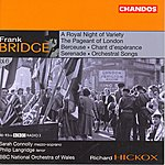 Richard Hickox Orchestral Works, Vol.6