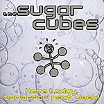 The Sugarcubes Here Today, Tomorrow, Next Week