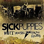 Sick Puppies What Are You Looking For (Radio Mix) (Single)