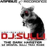 DJ Sulli Dj Sulli - The Dark Hamster - Dj  Mix