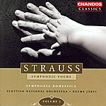 Neeme Järvi Strauss: Symphonic Poems, Vol.2