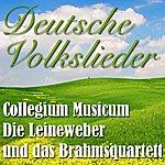 Collegium Musicum Deutsche Volkslieder