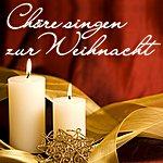 Collegium Musicum Chöre Singen Zur Weihnacht