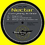 Nectar Everything At Once (3-Track Maxi-Single)