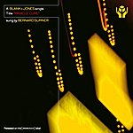 Blank & Jones Miracle Cure (8-Track Maxi-Single)