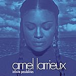 Amel Larrieux Infinite Possibilities