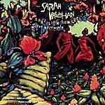 Sarah Vaughan Brazilian Romance