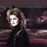 Bonnie Tyler Secret Dreams & Forbidden Fire