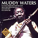 Muddy Waters Collection Gold