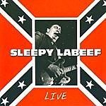 Sleepy LaBeef Live In Barcelona
