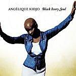 Angélique Kidjo Black Ivory Soul