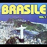 Ensemble Latino Brasile, Vol.1