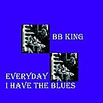 B.B. King Everday I Have The Blues