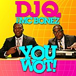 DJ Q You Wot! (Radio Edit) (Single)