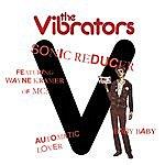 The Vibrators Sonic Reducer