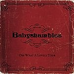 Babyshambles Oh What A Lovely Tour (Live)