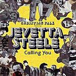 Christian Falk Calling You (2-Track Single)