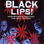 Black Lips We Did Not Know The Forest Spirit Made The Flowers