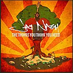Jay Nash The Things You Think You Need (Bonus Tracks)