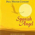 Paul Winter Spanish Angel