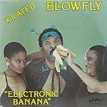 Blowfly Electronic Banana
