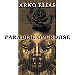 Arno Elias Paradise Overdose
