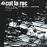 Cut La Roc Fallen (3-Track Remix Maxi-Single)