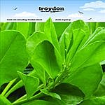 Troydon Shades Of Green (EP)