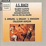 Collegium Aureum Bach: Bauern/Kaffeekantate