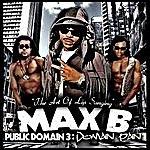 Max B Public Domain 3: Domain Pain
