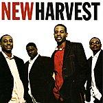 New Harvest New Harvest