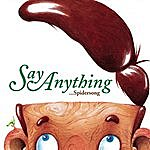 Say Anything Spidersong (Single)