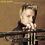 Chris Botti Indian Summer (Single)