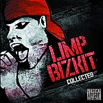 Limp Bizkit Collected