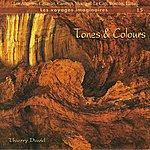 Thierry David Tones & Colours