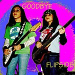 Flipside Goodbye (Single)