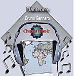Bruno Gennaro Flamenco