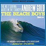 Andrew Gold The Beach Boys