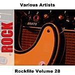 Bill Haley & His Comets Rockfile Vol.28
