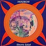 Merzbow Electric Salad