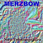 Merzbow New Takamagahara