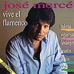 José Mercé Vive El Flamenco: Bulerias - Seguiriyas - Fandangos - Tientos - Tangos