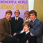 Herman's Hermits Wonderful World: Live